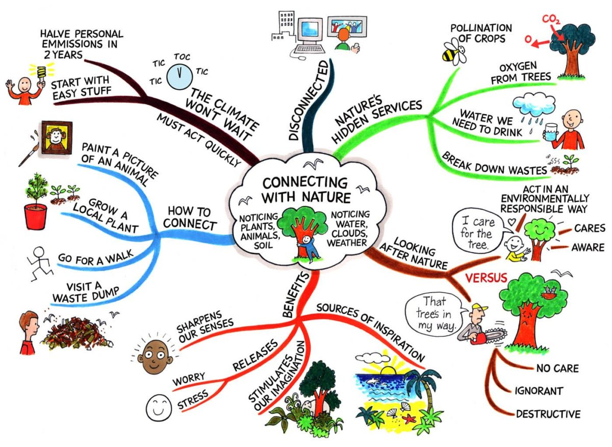 How To Create A Mind Map (+ Examples) Examples Of Maps on usa sales territory maps, literature review maps, types of maps, benefits of maps, diagrams of maps, development of maps, basic features of topographic maps, a collection of maps, activities of maps, photography of maps,